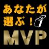 ver2_MVP_s