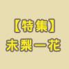 miri_tokusyu_s